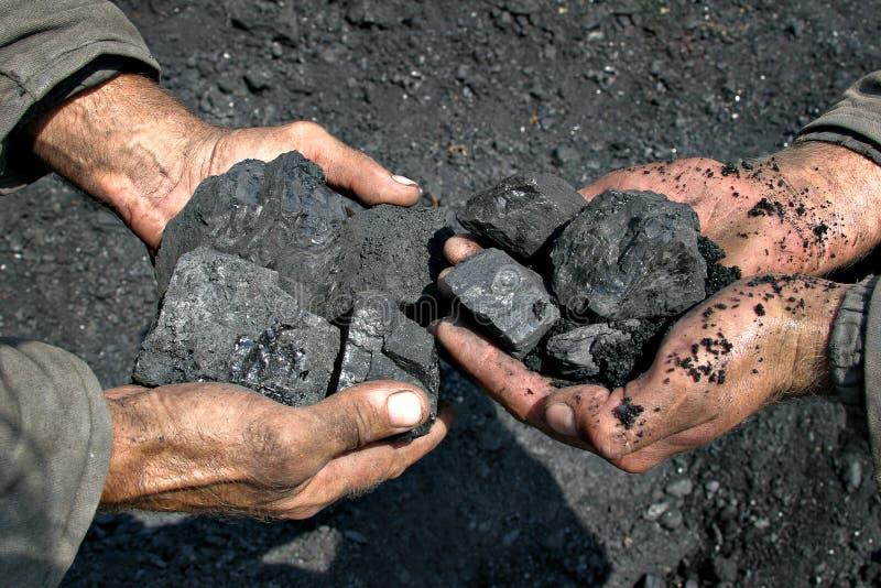 Coal miner in the hands of stock photo