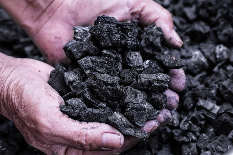 Coal mining - Man hand holding natural black charcoal for background. Picture idea about coal mining, coal processing, energy sou stock photos