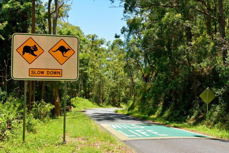 Coalas e cangurus Conduza lentamente o sinal de tráfego ao longo da estrada mim fotografia de stock royalty free