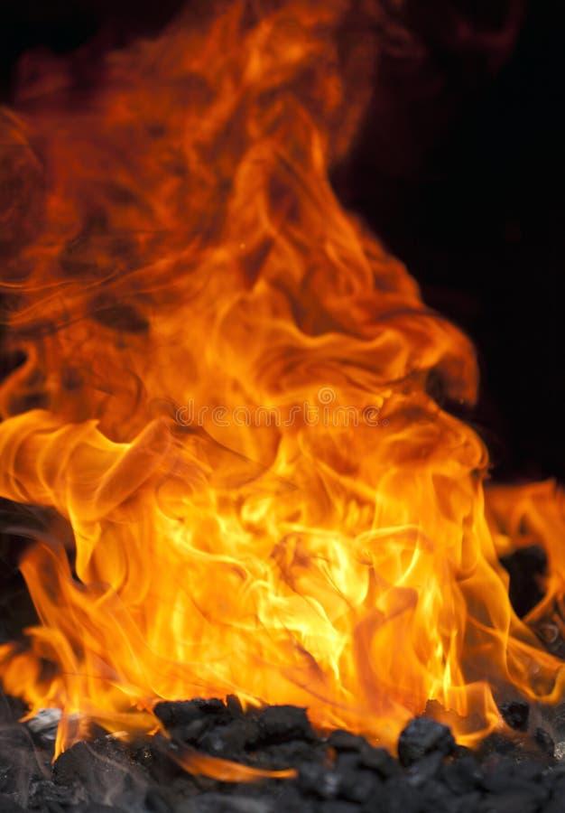 Download Coalfire of a Blacksmith stock image. Image of coal, blazing - 25543945
