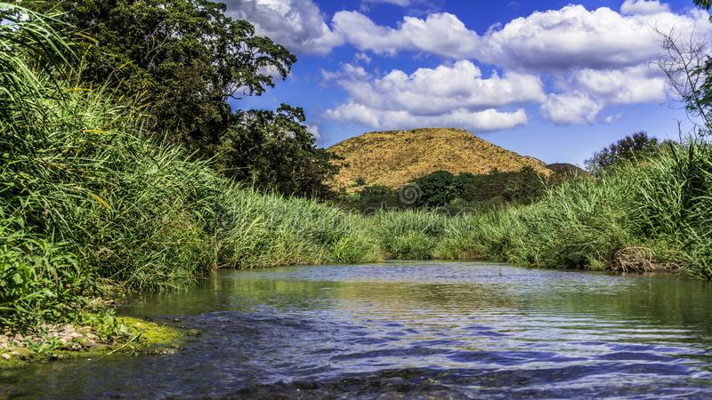 Coamo River on a sunny day. stock photo