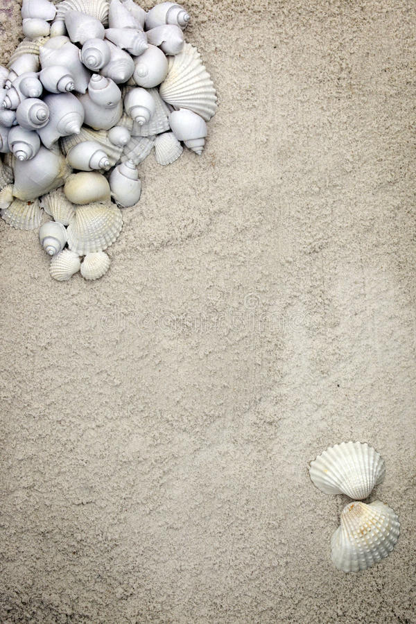 Free Coarse Sand Stationary Background Royalty Free Stock Images - 11569549