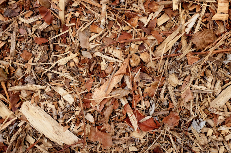 Coarse wood chippings background stock photo