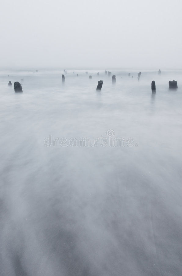 Coast Beach Waves and Stumps stock image
