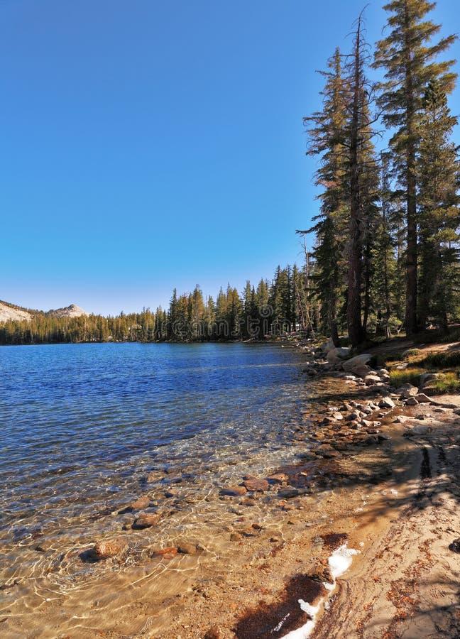 Download The  Coast Of Beautiful Lake Stock Photo - Image: 11926268