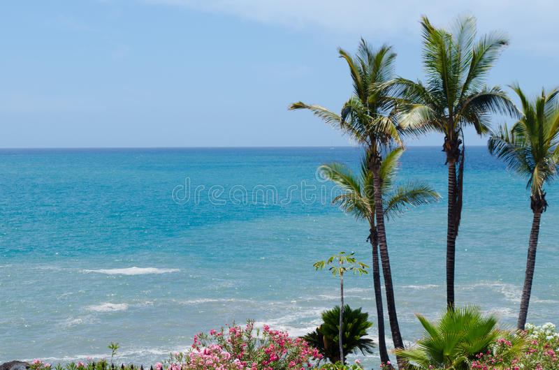 Coast of Costa Adeje.Tenerife island, Canaries, Spain.  royalty free stock image