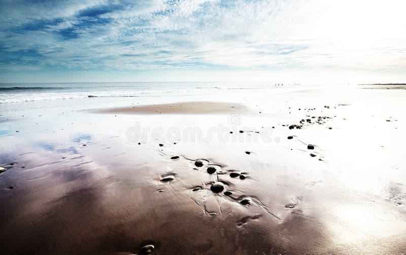 Download Coast in Costa Rica stock photo. Image of palm, coastline - 109450300