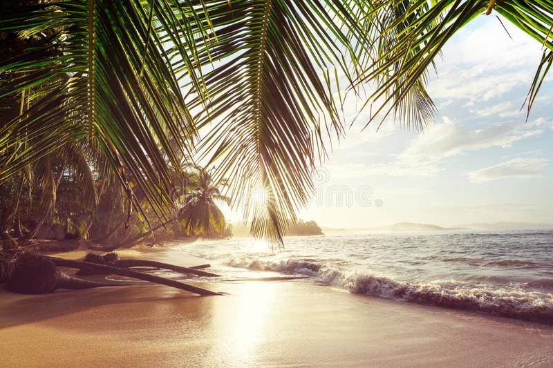 Coast in Costa Rica. Beautiful tropical Pacific Ocean coast in Costa Rica stock photo