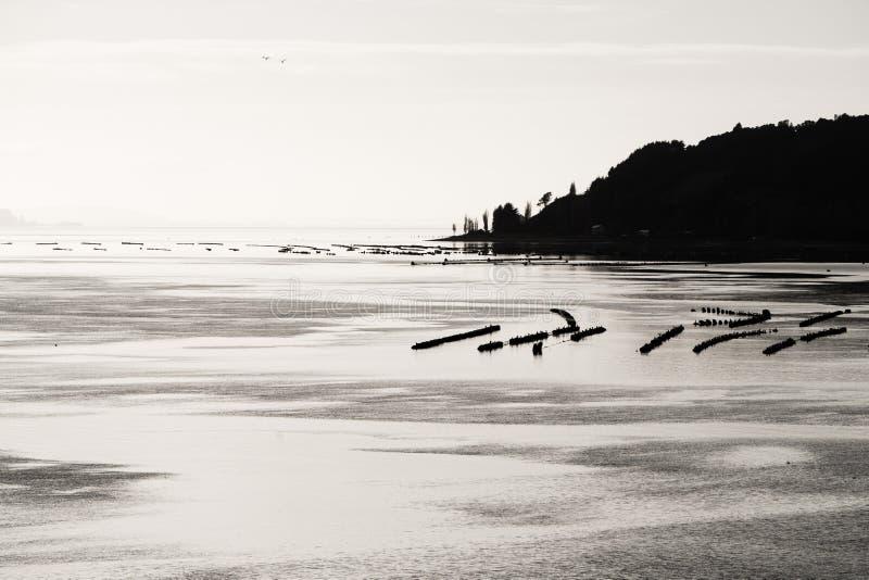 Coast of Dalcahue in Chiloe island in Chile stock photo