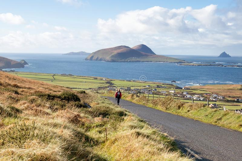 Coast in Dingle peninsula. Walker on street with View of the Blasket islands on Dingle peninsula, co Kerry, Ireland royalty free stock photo