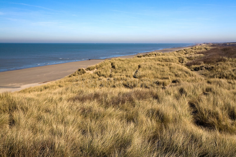 coast dunes στοκ εικόνες