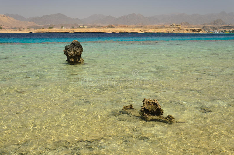 Coast in Egypt. Red Sea royalty free stock image