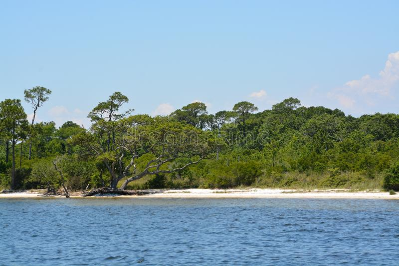 The coast of Gulf Breeze in Santa Rosa County Florida on the Gulf of Mexico, USA.  royalty free stock photography