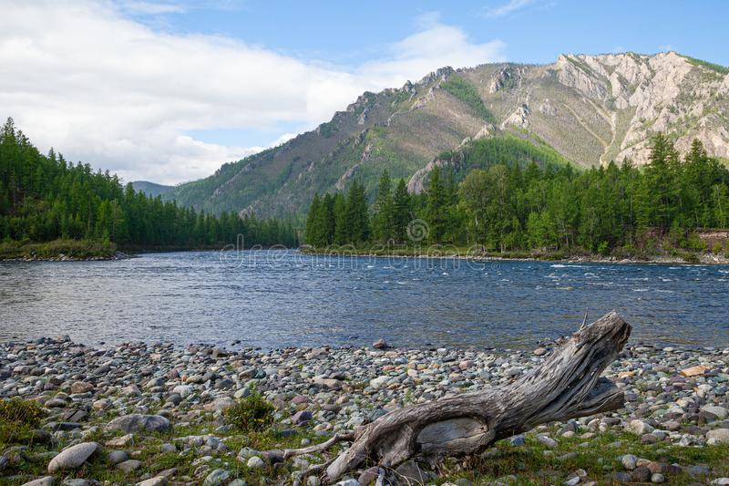 Coast of mountain river with colorful pebbles stock photography