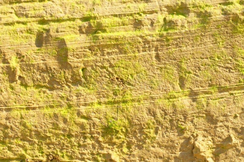 Coast of a open-cast mine stock image