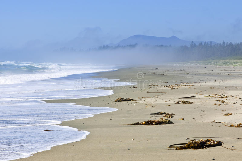 Coast Of Pacific Ocean In Canada Royalty Free Stock Images