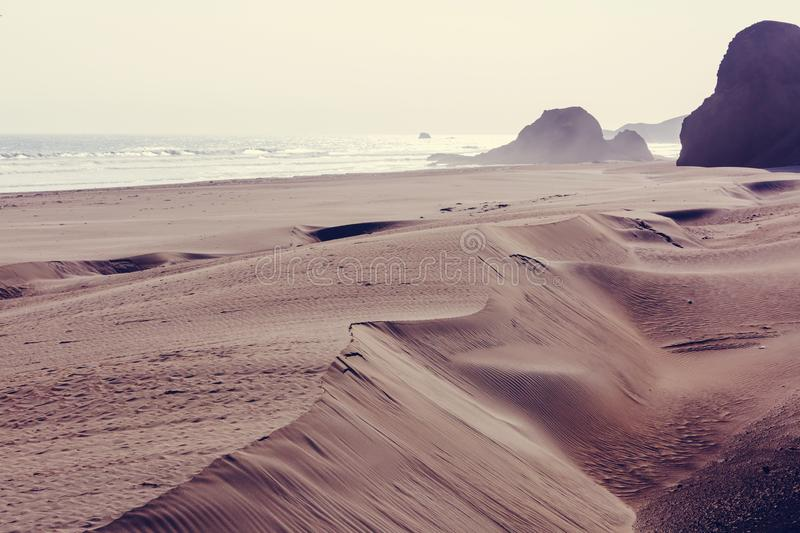 Coast in Peru royalty free stock photography