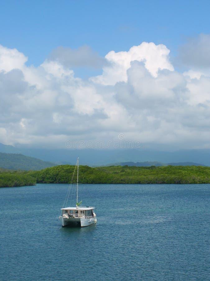 Coast at Port Douglas, Queensland