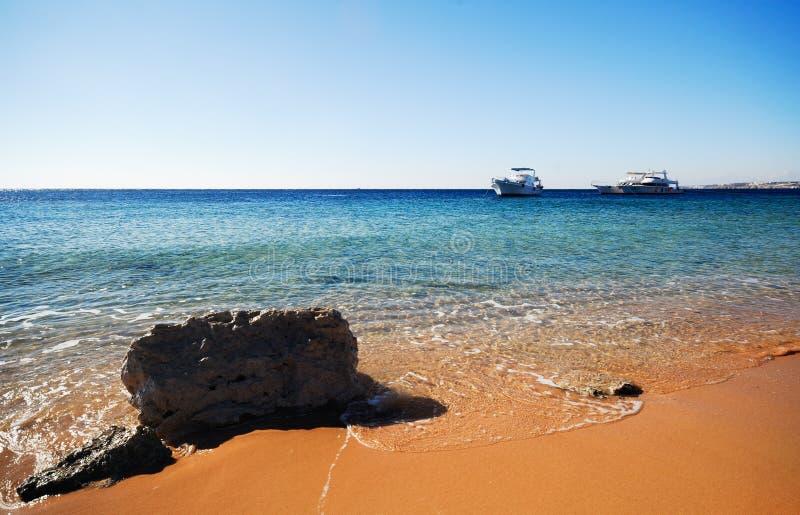 The coast of sharm el sheikh royalty free stock image