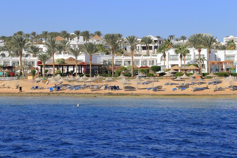 Download Coast Sharm El Sheikh editorial stock photo. Image of coral - 86660013