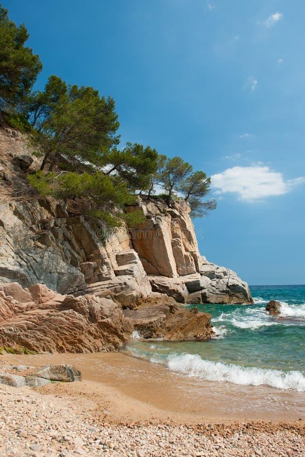coast spanjor arkivfoton