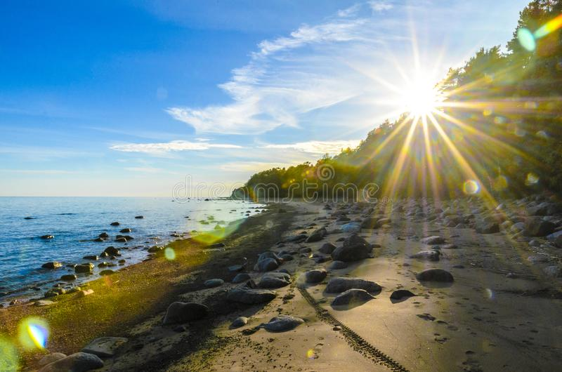 Coast stones, beach, sea, sunset, glare through the trunks of high Northern pines. the effect of the film royalty free stock image