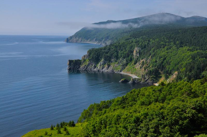 The coast of the Tatar Strait, a place where sea water meets the taiga royalty free stock photography