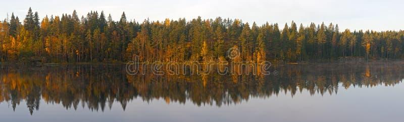 Download Coast Of The Wood Lake Royalty Free Stock Photos - Image: 26621078
