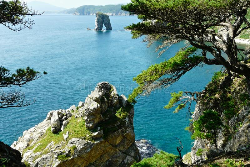 Coastal cliffs with pine trees and a detached rock in the sea stock photography
