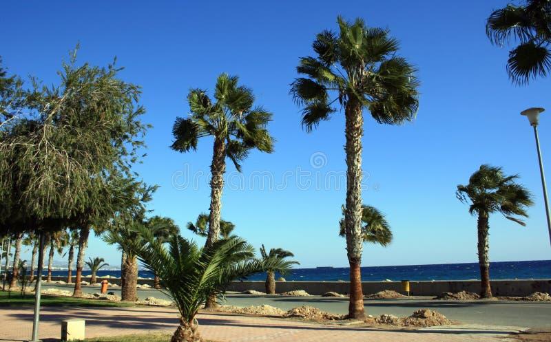 Download Coastal Cyprus stock photo. Image of travel, urban, heaven - 1745720