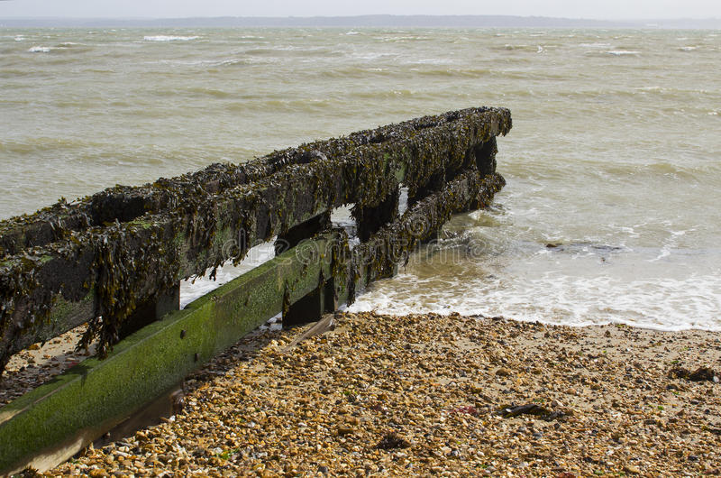 Coastal defenses to help prevent coastal erosion on the pebble beach in Titchfield, Hampshire on the south coast of England. Seaweed covered coastal defenses to royalty free stock photos