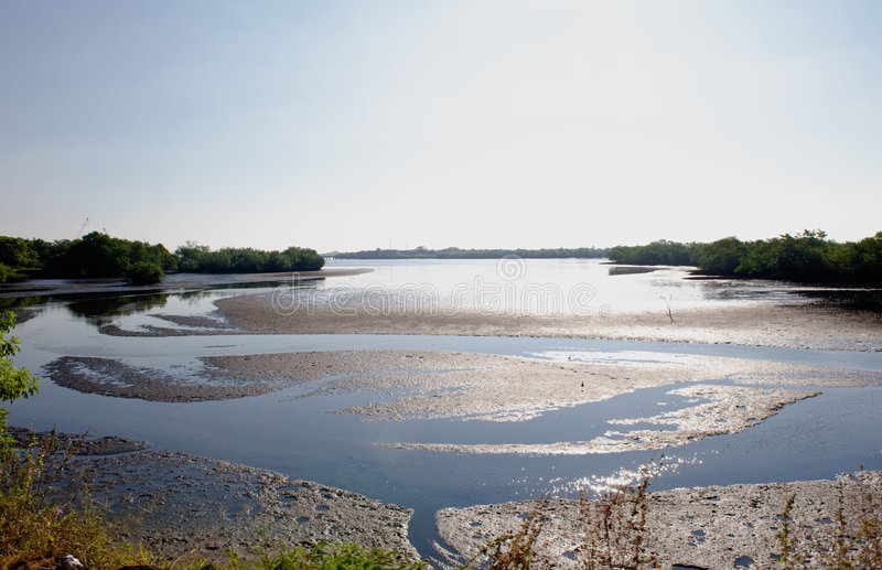 Download Coastal Estuary Or Waterway Stock Photo - Image: 7670736