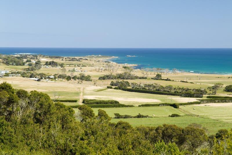 Coastal Fields. Lush farmland meets rough sea's on Western Tasmania's Green Point, near Marrawah royalty free stock photography