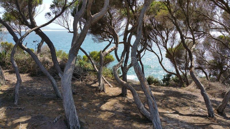 Coastal stock image