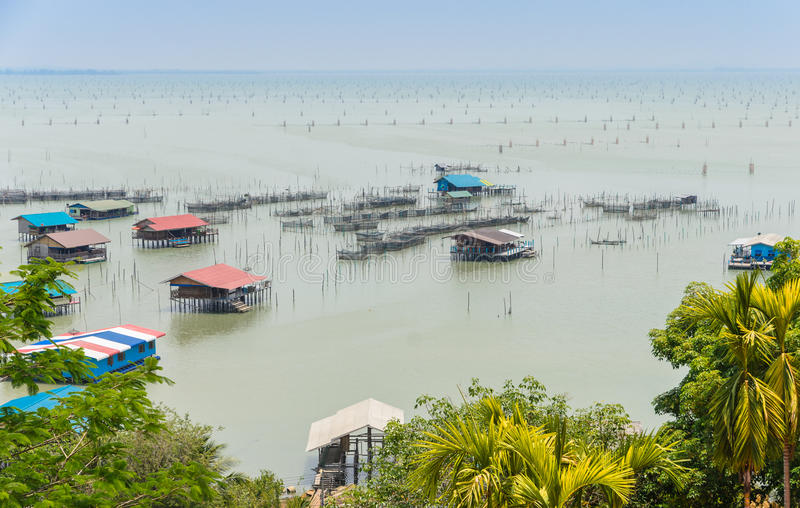 Coastal Fish Farming In Thailand Stock Photo - Image of seafood ...