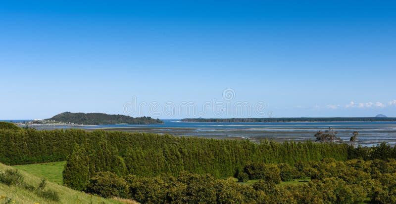 Coastal fruit tree farm, New Zealand. Stone fruit trees in central Bay of Plenty New Zealand. Lush green coastal landscape stock photo