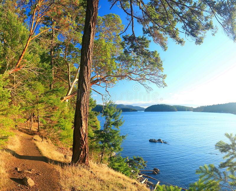 Coastal Hikng Trail at Bennett Bay in Evening Light, Gulf Islands National Park, Mayne Island, British Columbia, Canada. Golden evening light is flooding the stock images
