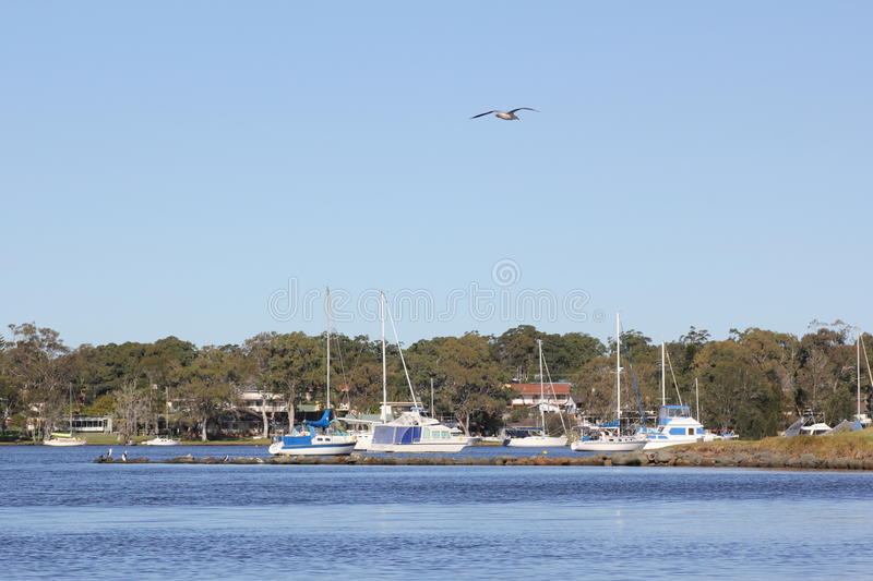 Download Coastal Lake And Boats Scenery Stock Photo - Image of idyll, macquarie: 20050364