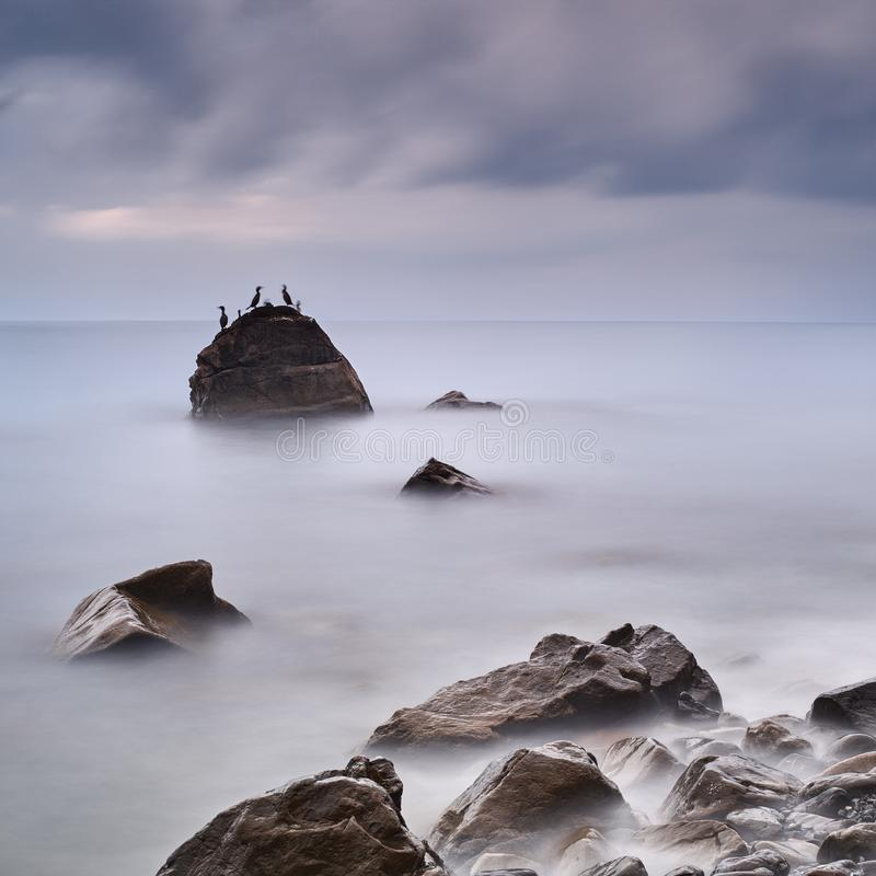 Coastal landscape with long exposure and stone on which sit cormorants.  stock photography