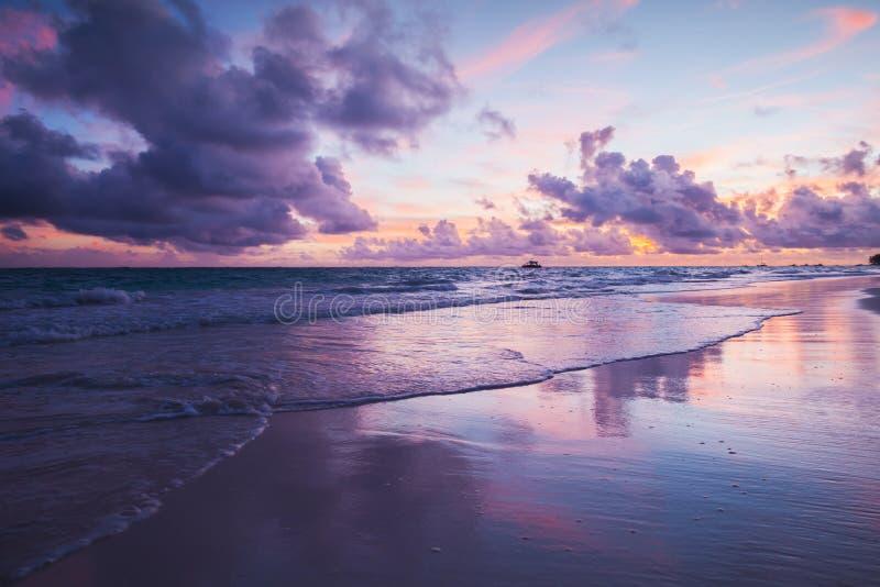 Coastal landscape in ultra violet tone. Atlantic Ocean coast, Bavaro beach, Hispaniola Island. Dominican Republic stock image