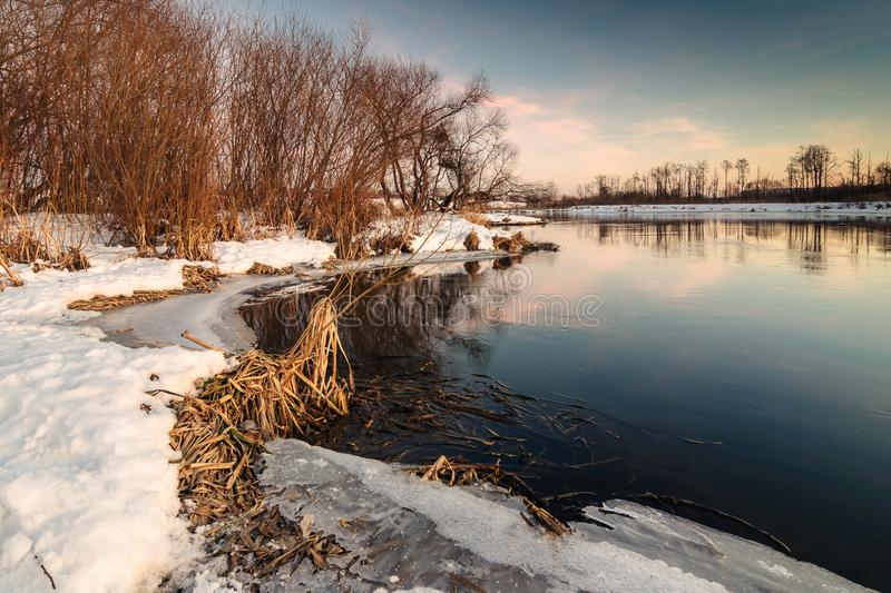 coastal line of non-freezing river in the warm light of a winter sunset stock photos
