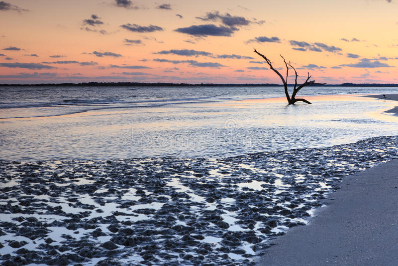 Coastal Mud Flats Folly Beach South Carolina royalty free stock photography