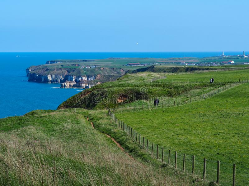 Coastal path at Bempton Cliffs, East Yorkshire, England. Coastal path from Bempton Cliffs to Flamborough Head with its lighthouses, East Yorkshire, England stock photography