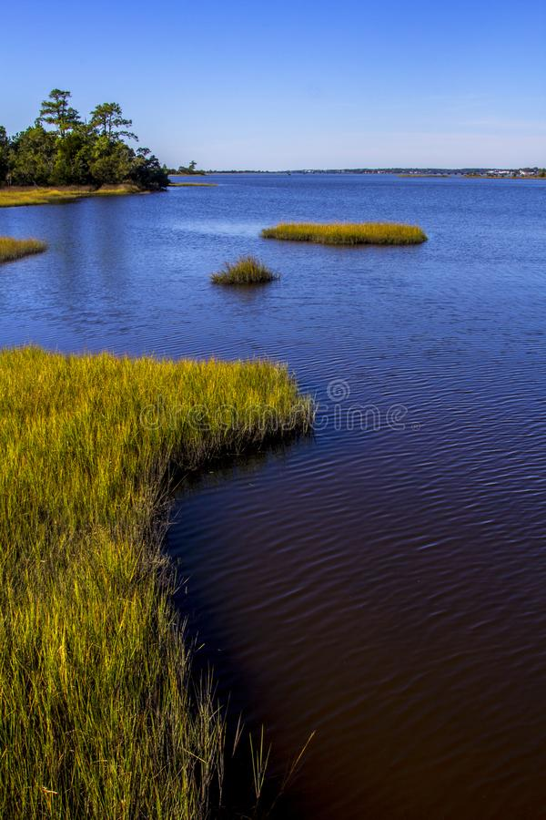 Saltwater Tidal Marsh in the Croatan National Forest, North Carolina royalty free stock photography