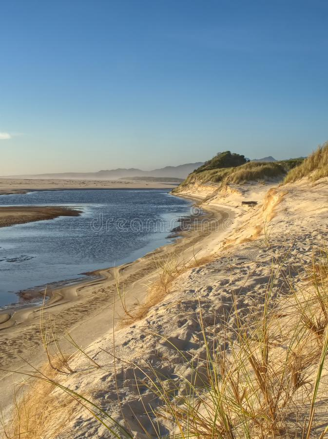 A coastal scene in Tasmania Australia in the late afternoon light. Coastal scene in Tasmania Australia where the Henty river enters Ocean beach in the late royalty free stock image