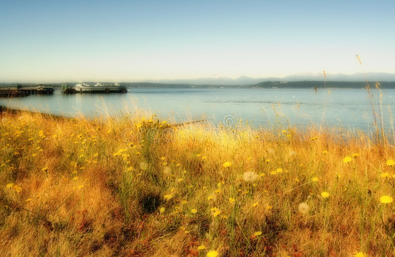 Coastal scenery royalty free stock photos