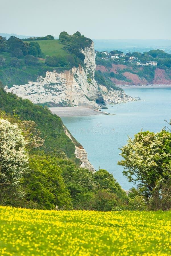 Coastal scenery at Beer. On the Jurassic coast in Devon. England. UK royalty free stock photos