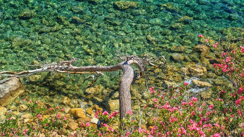 Coastal summer landscape - view of the coastal waters of the Mediterranean Sea on the Lycian Way stock photography