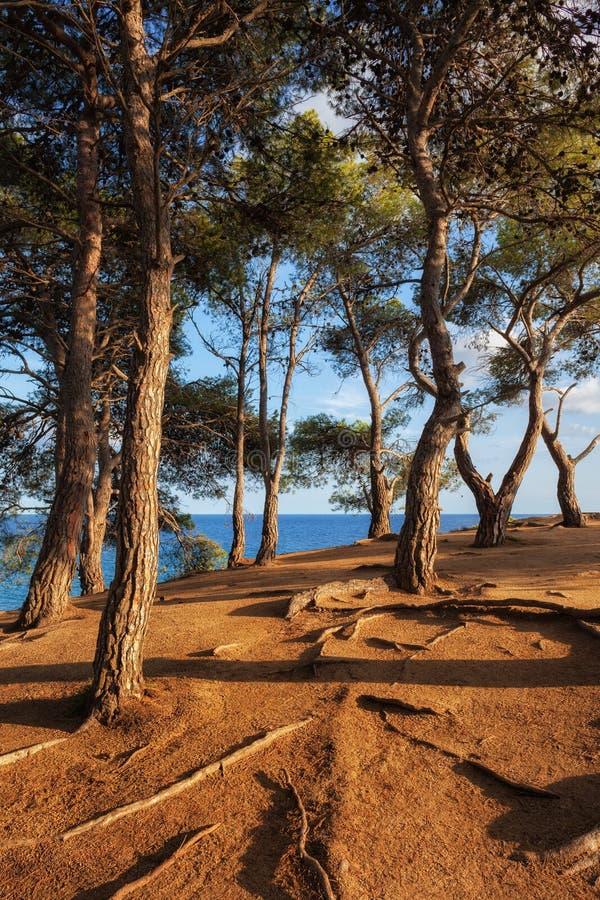 Coastal Sunset on Costa Brava in Spain royalty free stock image