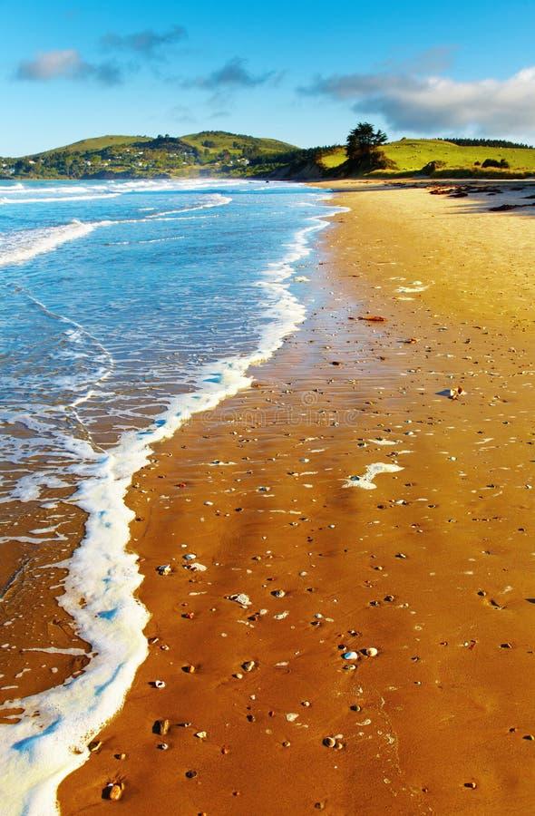 Coastal view, New Zealand stock photos